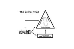 Lethal-Triad